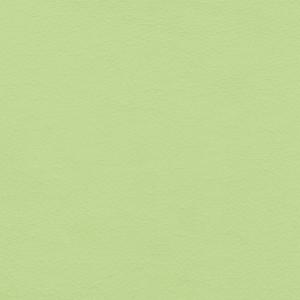 GALAXY Light Green